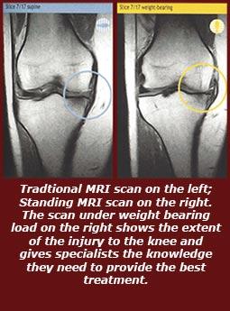 Brighton Radiology xray image